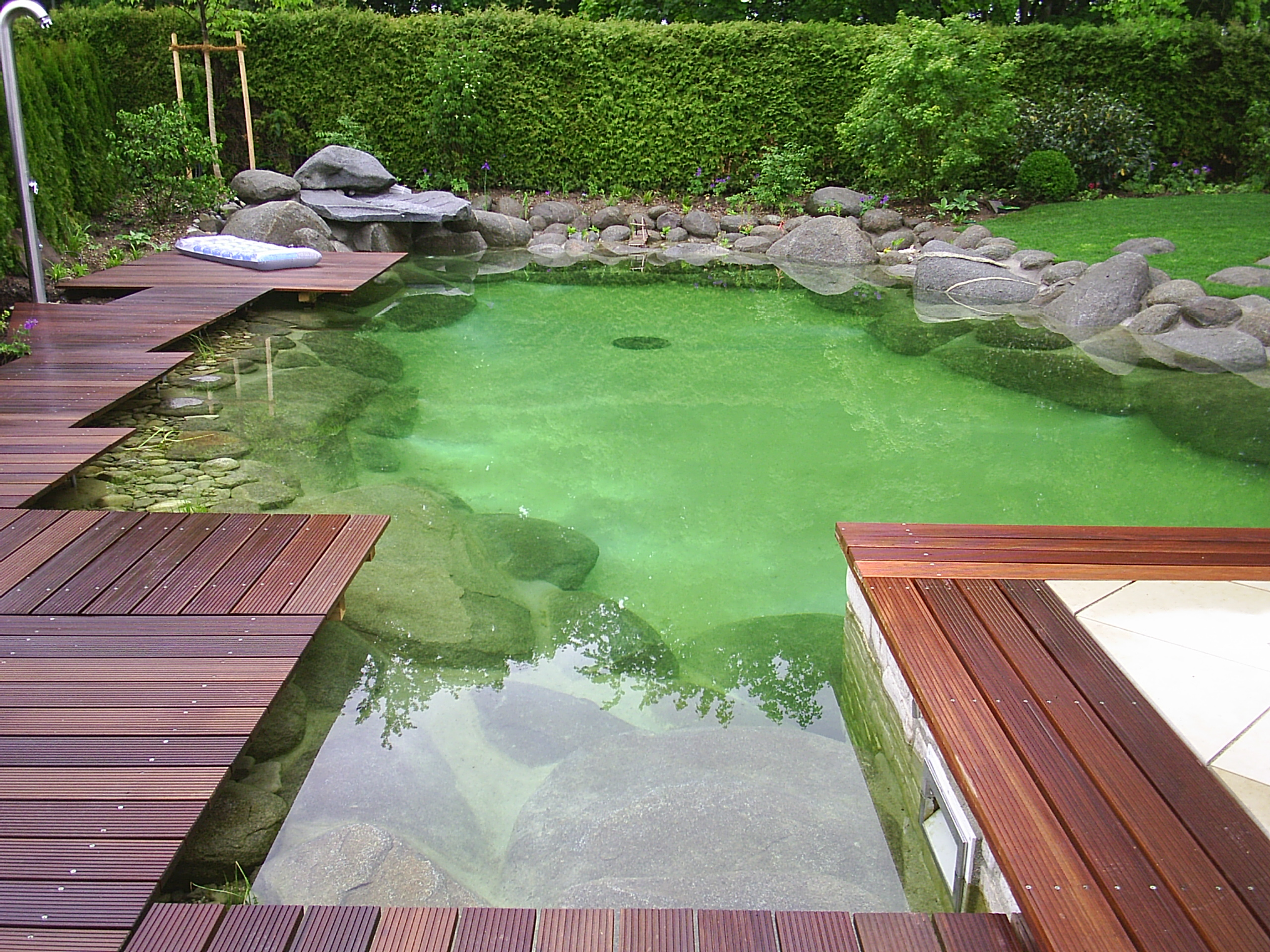 Hierner gmbh schwimmteich for Contemporary koi pond design